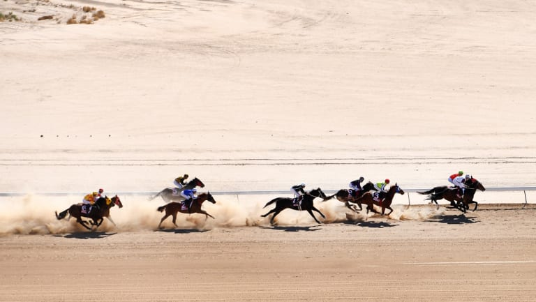 Horses and sprint are seen during race 3 at the Birdsville Races o   n Friday.