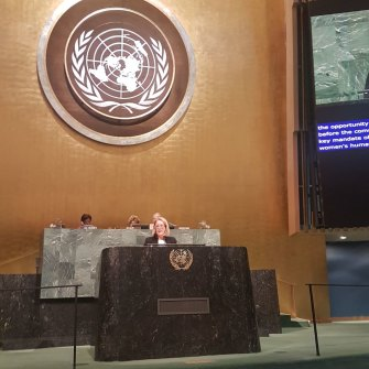 Elizabeth Broderick at the UN speaking on behalf of the Working Group on Discrimination against Women and Girls.