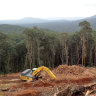 Queensland landholders warned of massive fines over 'exempt' land clearing
