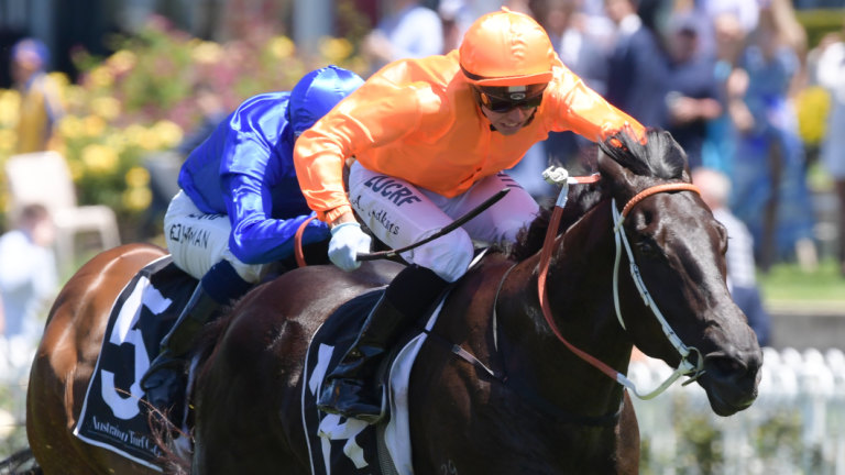 Race-by-race preview and tips for Kensington