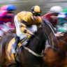 Tips and race-by-race preview for Coffs Harbour on Thursday