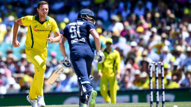 Selectors say Hazlewood has not played enough to make the World Cup squad.