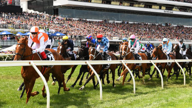 Best ride wins ... Craig Williams leads the Melbourne Cup field out of the straight for the first time.