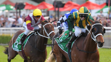Racing returns to Rosehill with another nine-race card on Saturday.