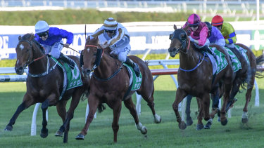 Searing acceleration: Deprive charges through on the inside to beat Heart Conquered at Randwick.