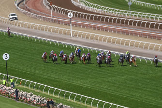 Anthony Van Dyck (at the back of the field) pulls out at the top of the straight in the Melbourne Cup.