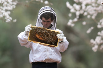 About 1088 professional apiary sites are located in 49 Queensland national parks.