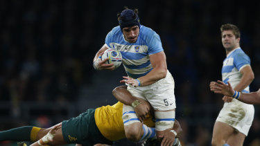 Wary: New Zealand have singled out Tomas Lavanini as a key for the Pumas.