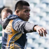 Super Rugby 2019: World Cup auditions kick off