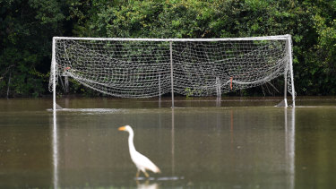 A football field covered in floodwater in Woombye on the Sunshine Coast.