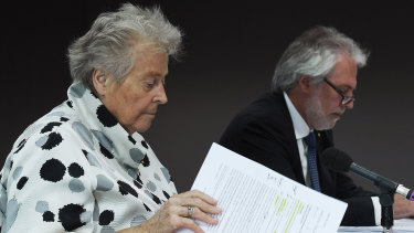 Energy Security Board head Kerry Schott and Australian Energy Market Commission chief John Pierce faced the Senate hearing on the proposed power company forced divestment bill in Sydney on Tuesday.