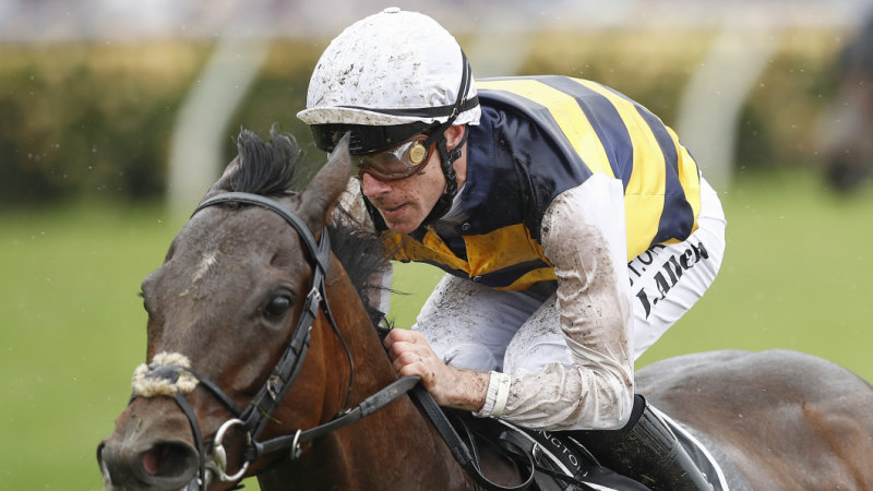 Downdraft shows class in Lexus Hotham on way to Melbourne Cup
