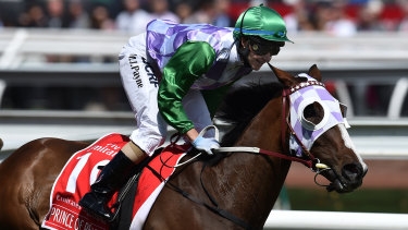 Breakthrough: Michelle Payne was the first female jockey to win the Melbourne Cup.