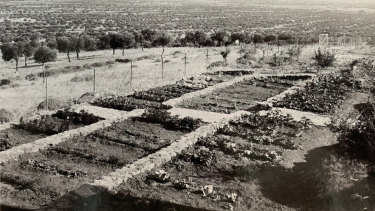 The land that is now Sparoza as it was in the 1960s when Jacky Tyrwhitt first started to garden there.
