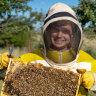 'Job-ready skills': School-based traineeships are the bee's knees