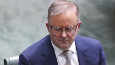 Opposition leader Anthony Albanese has backed a push to expand paid domestic violence leave to all workers.