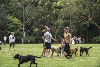 Residents in Greenwich worry about the environmental impact from increased heat and plastic and rubber debris if the Lane Cove Council proceeds with plans to turn the Bob Campbell Oval into a synthetic playing field.