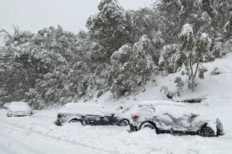 Cars line the side of the road of Alpine Way between Jindabyne and Thredbo on Monday after heavy snow hit the Snowy Mountains region.