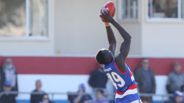 Leek Alleer from the Bulldogs marks the ball during the Round 18 SANFL match between Central Districts and Adelaide at X Convenience oval in Adelaide, Saturday, August 21, 2021. (SANFL Image/David Mariuz)  The AGE SPORT Leek Alleer, a mature-age, Sudanese-born AFL prospect. Leek playing in the Central District's round 18 game against Adelaide.Please credit: SANFL