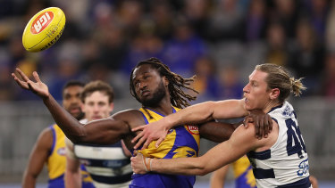Top tap: Nic Naitanui gets the better of Geelong's Mark Blicavs in a ruck contest during West Coast's round 9 win at Optus Stadium.