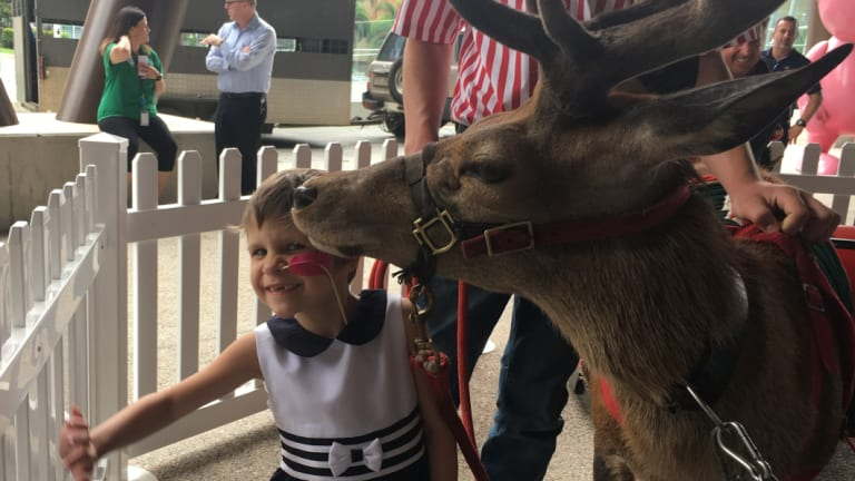 Maddison Challen was excited to get a kiss from one of Santa's reindeer.