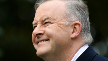 The JobKeeper gaffe has given Anthony Albanese an opportunity to attack the government.