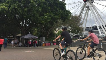 Four large trees in front of the Wheel of Brisbane will be removed to allow the new Neville Bonner Bridge to land at South Bank.