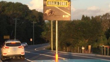 Koala Beach near Pottsville