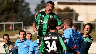 Japanese import Tomoki Imai of Western United leaps highest against the Sky Blues.