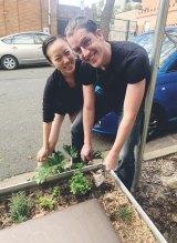 Compost contributors Niklas Olsson and Julia Di Kang plant mint around Vikki Tennant's compost.