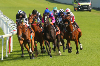 There is an eight-race card at Hawkesbury today.