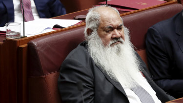 """Pat Dodson: """"[Ken Wyatt] needs the support of his leader. If he doesn't have that then he's playing with coconuts in the sea""""."""
