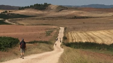 A shot by Father Richard Thompson who is currently walking the full Camino trail across northern Spain.