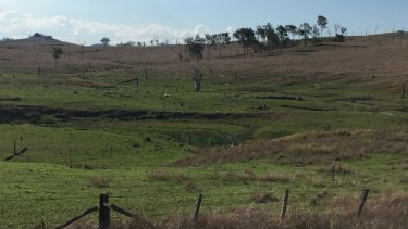 Badly cleared paddocks lead to sinkholes and erosion.