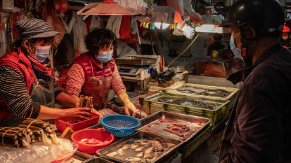 On World Health Day animal groups calls for ban on 'wet markets'