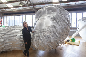 Lisa Roet with David Greybeard.