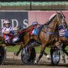 Best since Beautide: Trainer-driver James Rattray has a huge opinion of Ignatius.