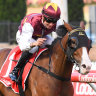 Streets ahead: Avalon delivers for young jockey