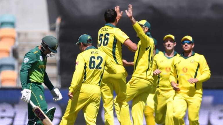 Early success: Australia celebrate the wicket of South Africa's Quinton de Kock, caught behind by wicketkeeper Alex Carey off Mitchell Starc for 4.