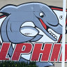 From a dump to the NRL: What you really need to know about The Dolphins