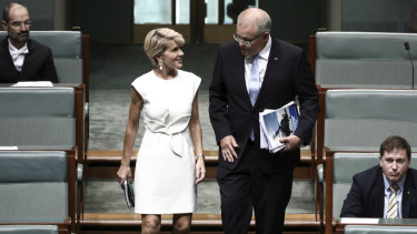 Julie Bishop announces she will not contest seat at next election
