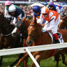 Decision looms over racehorse owners at Melbourne Cup carnival