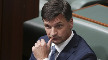 Energy Minister Angus Taylor