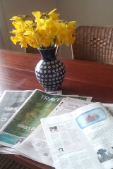 Daffodils and the Good Weekend  colouring my world.