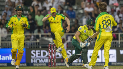 T20 World Cup to thrive in crowded slot if competing against AFL, NRL