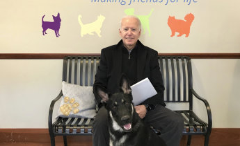 Joe Biden and his adopted German shepherd Major, in Wilmington, Delaware in 2018.