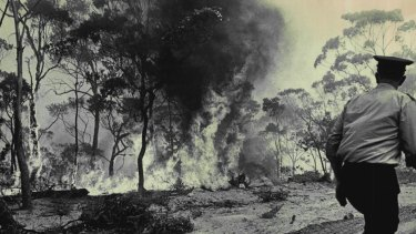 Fire rages on Bee Farm Road, Springwood, November 29, 1968.
