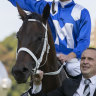 Bronzed honour: Winx statue set to be unveiled at Rosehill
