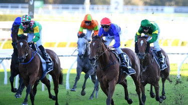 Rubisaki winns the last leg of Saturday's quaddie at Randwick but by then some punters had cashed out for a windfall