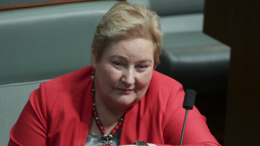 NSW Liberal MP Ann Sudmalis in the House of Representatives on Monday.